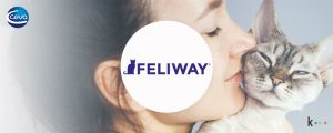Completa campaña de marketing para Feliway: estudio de mercado + WOM + reviews