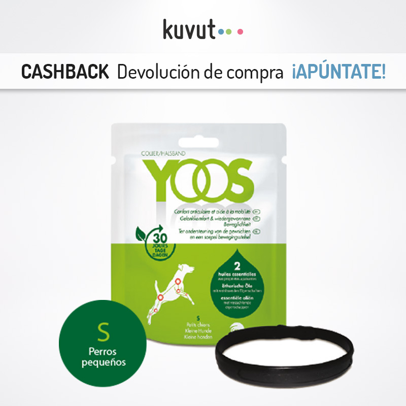 Cashback con promoción en Kuvut