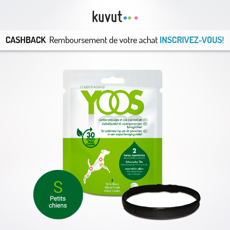 Cashback depuis Kuvut